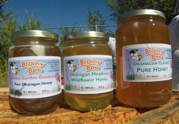 Kaye's Bees Apiary / Brainy Bee Honey